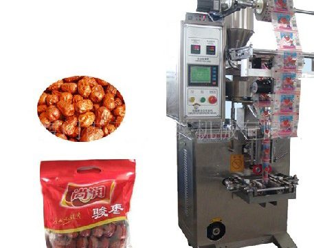 dates packing machine